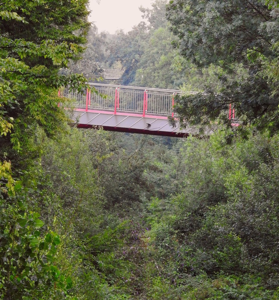 Erzbahntrasse Jungle DIRK KROGULL BOCHUM