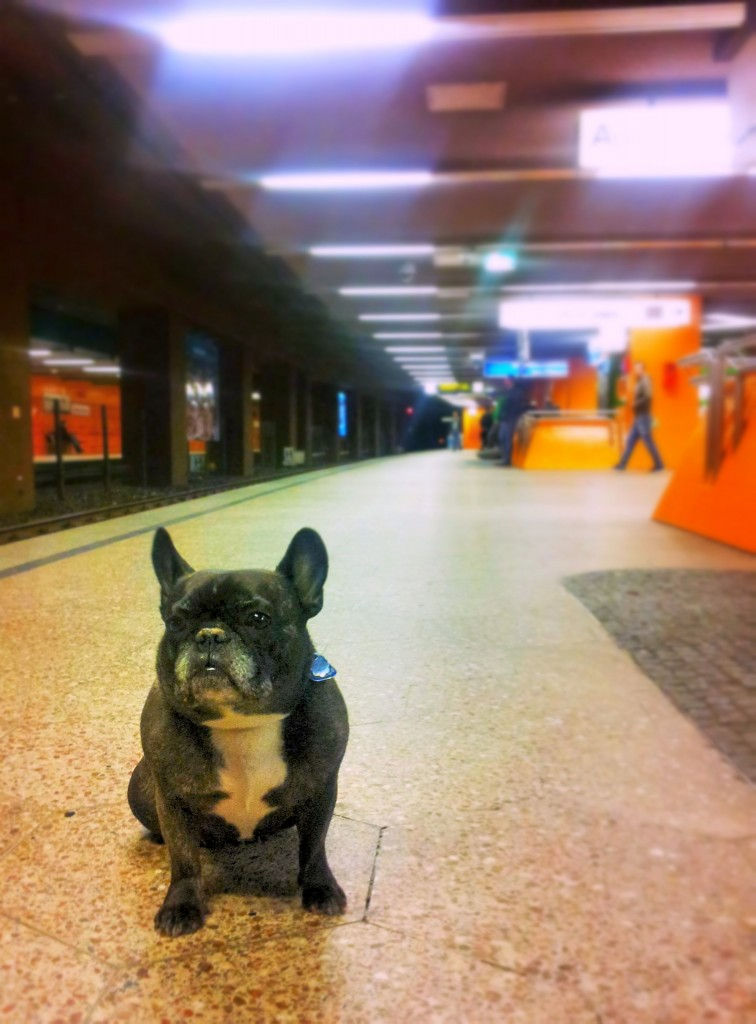 subway to sally bochum